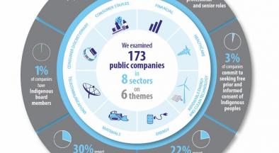 We examined 173 public comapnies across 8 themes.