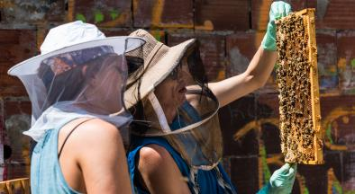 Bee Keeping at Hives for Humanity